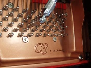 CIMG1381 (430x323).jpg