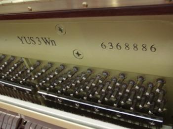 CIMG1502 (550x413).jpg